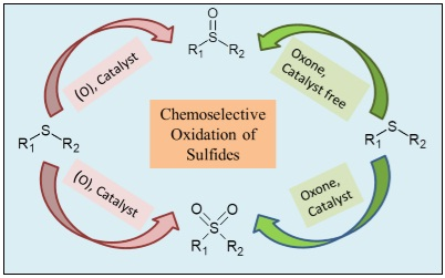 A Concise Review on Synthesis of Sulfoxides and Sulfones with Special Reference to Oxidation of Sulfides