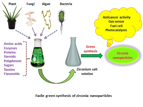 A Review on Plant Extract Mediated Green Synthesis of Zirconia Nanoparticles and Their Miscellaneous Applications