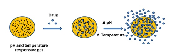 A Review on pH and Temperature Responsive Gels in Drug Delivery