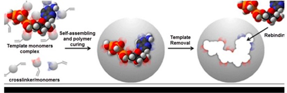 A Review on: Molecularly Imprinting Polymers by Ion Selective Electrodes for Determination Drugs