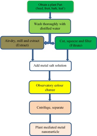 Plant-Mediated Iron Nanoparticles and their Applications as Adsorbents for Water Treatment–A Review