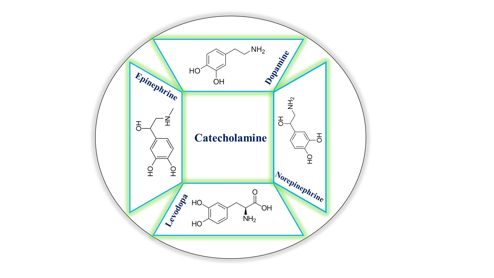 Recent Advances in Fluorescence Detection of Catecholamines